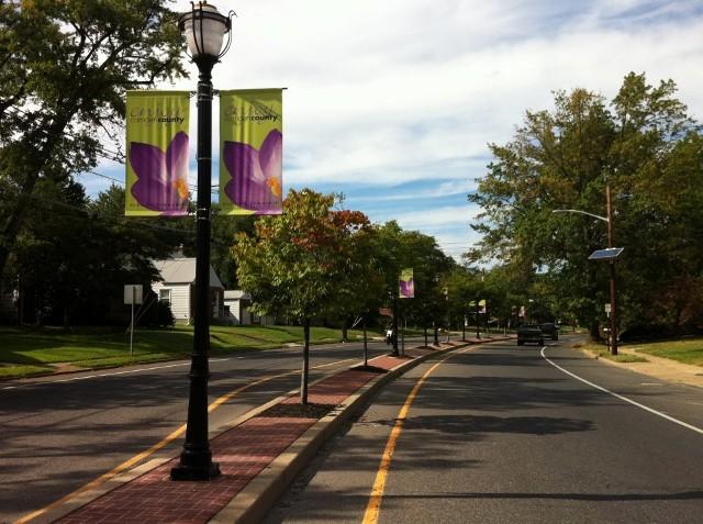 Custom School flags ,Township Parade flags, sports flags |Haddon